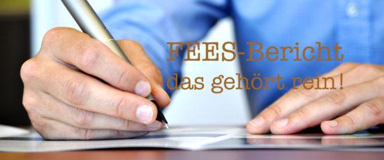 FEES-Bericht